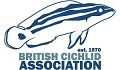 British Cichlid Association