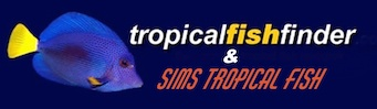 Buy @ Sims Tropical Fish