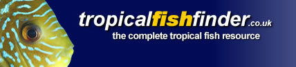 Tropical Fish Finder