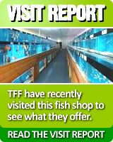 Read about our visit to this fish shop here!!